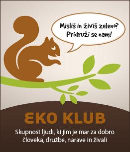 Eko klub